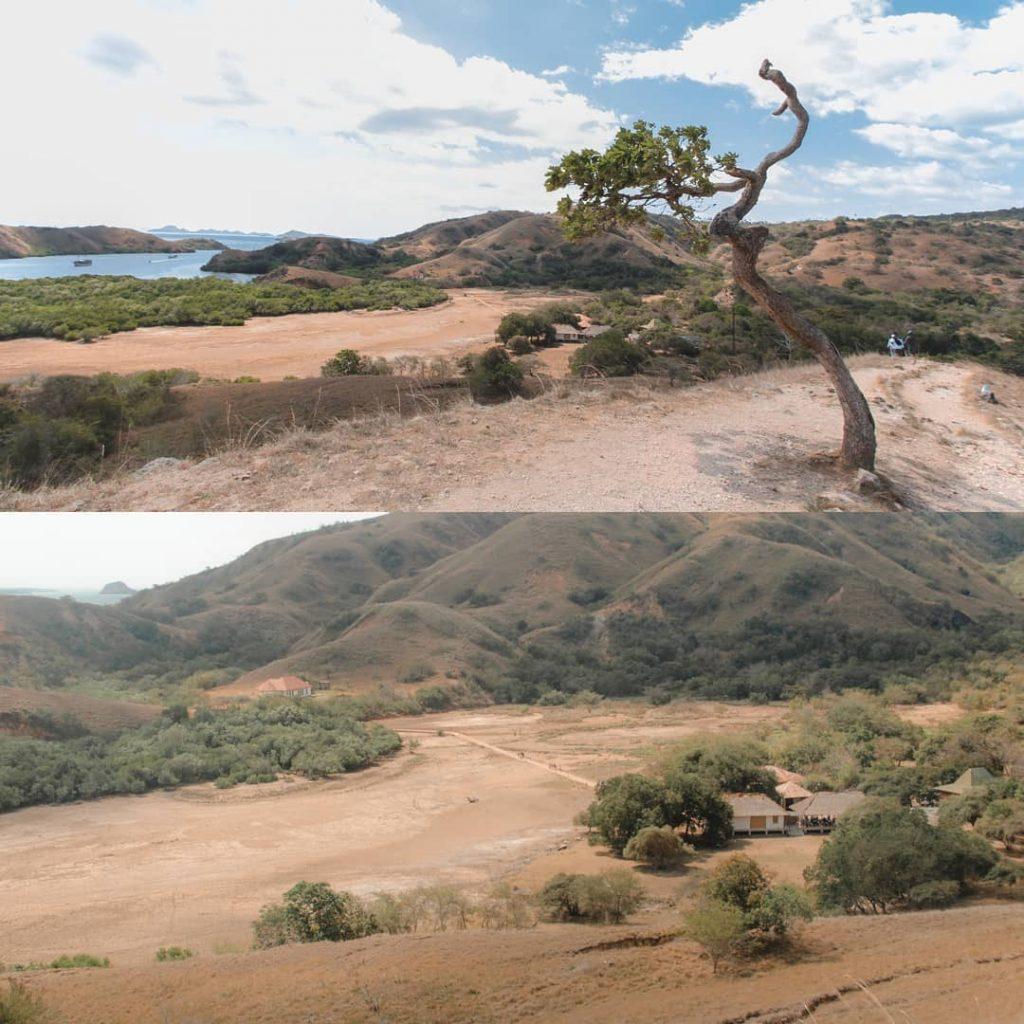 A Virtual Trip Inside the Famous Komodo Dragons Island
